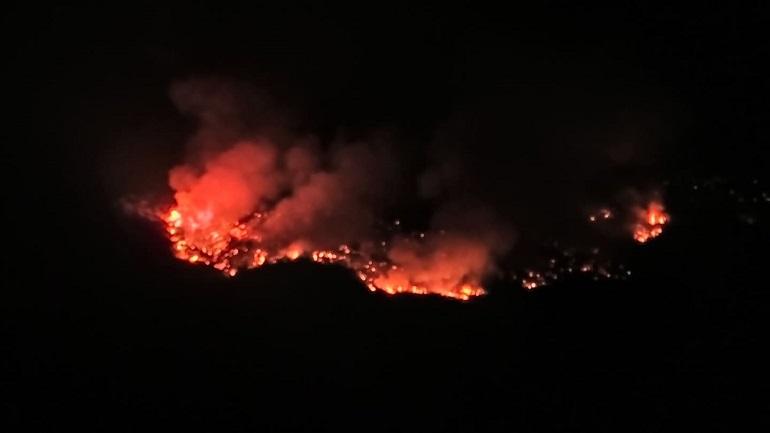 Κεφαλονιά: Πυρκαγιά σε δασική έκταση στα Φάρσα
