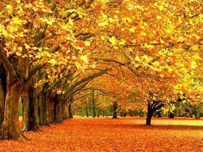 Ξεκινά η φθινοπωρινή ισημερία
