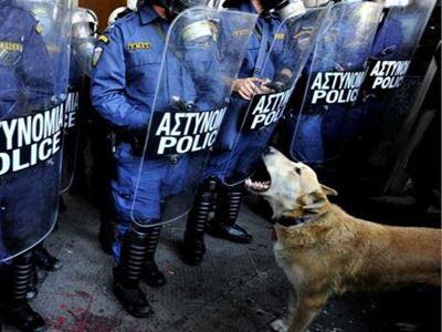 Πέθανε ο Λουκάνικος, το θρυλικό σκυλί των διαδηλώσεων