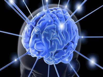 Πώς αντιλαμβάνεται τη γεύση ο εγκέφαλος