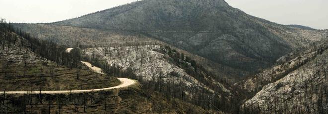 Έκτακτο! Μεγάλη φωτιά στη Βαρυμπόμπη (photos + videos)