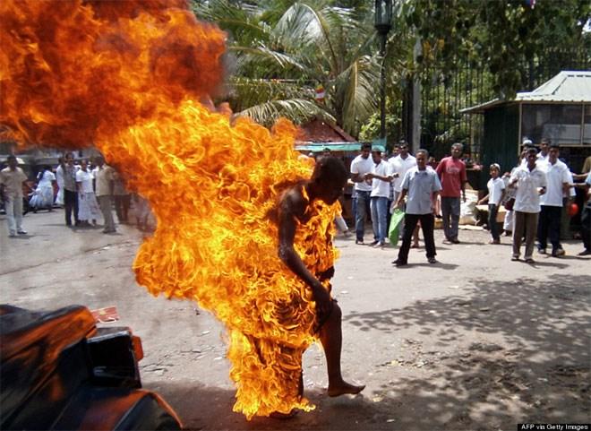 24 Μαΐου. Σε διαμαρτυρία κατά της σφαγής των βοοειδών στη Σρι Λάνκα, ένας Βουδιστής καλόγερος, ο Bowatte Indaratane αυτοπυρπολείται. Κατά το 2013, δεκάδες ήταν παρόμοιες πράξεις μοναχών, πολλές από τις οποίες σημειώθηκαν στο Θιβέτ.