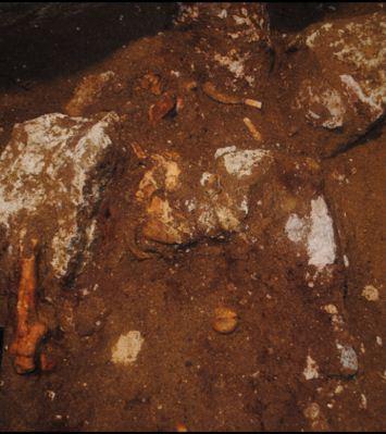 O σκελετός όπως βρέθηκε από την ανασκαφική ομάδα
