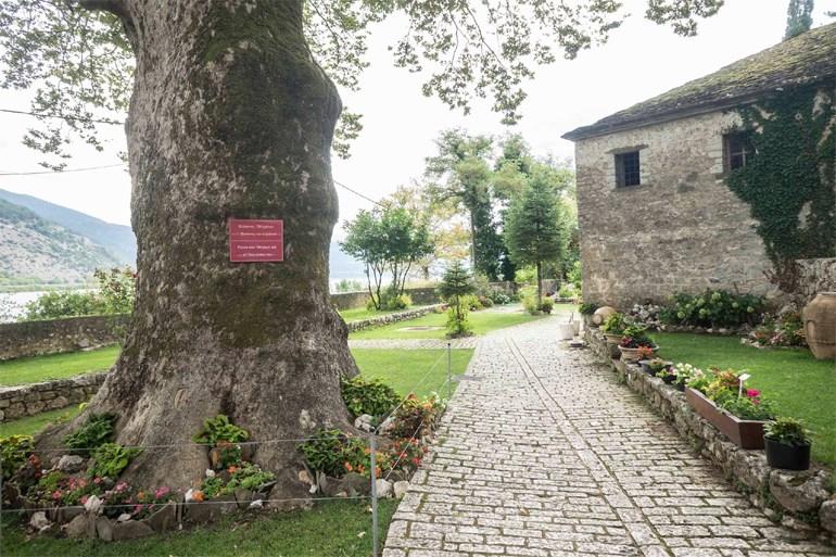 Άποψη του κήπου του μουσείου, όπου δεσπόζει ο 700 ετών πλάτανος