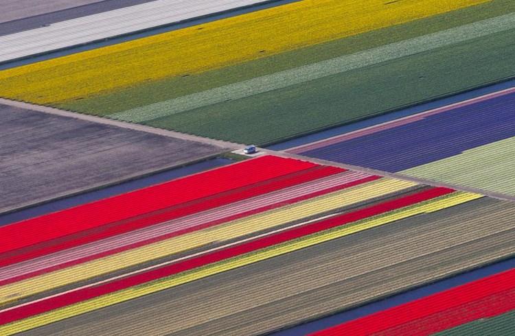 O 'Kήπος της Ευρώπης'' από ψηλά-Εκτάσεις με καλλιέργειες λουλουδιών στην Ολλανδία/Yves Herman