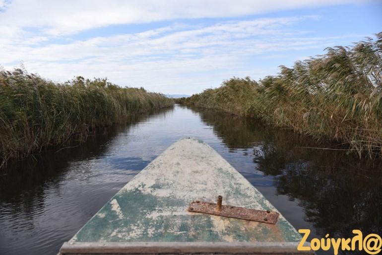 Το Δέλτα του Έβρου προστατεύεται με διεθνείς περιβαλλοντικές Συνθήκες