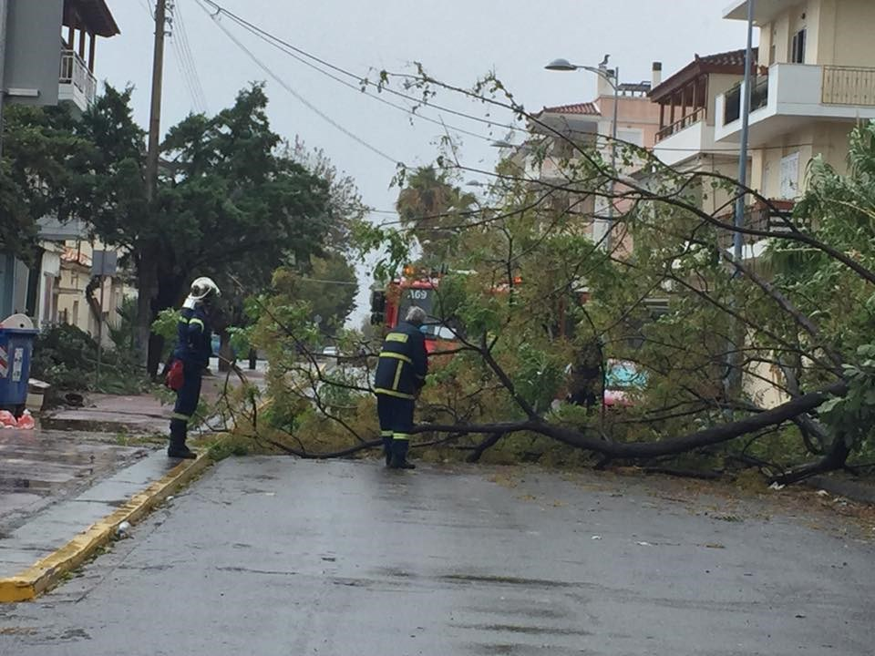 Στην οδό Σαλαμίνος στην Μαρίνα της Καλαμάτας, έσπασαν τα κλαδιά ενός μεγάλου δέντρου και ένα από αυτά έπεσε πάνω σε σταθμευμένο αυτοκίνητο, προκαλώντας του υλικές ζημιές