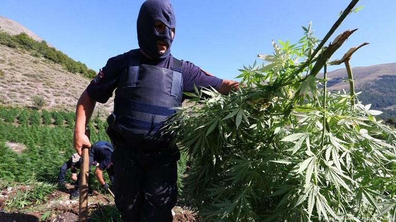 Αλβανία: «Κολομβία της Ευρώπης». Το πρόβλημα των καρτέλ ναρκωτικών είναι μεγάλο