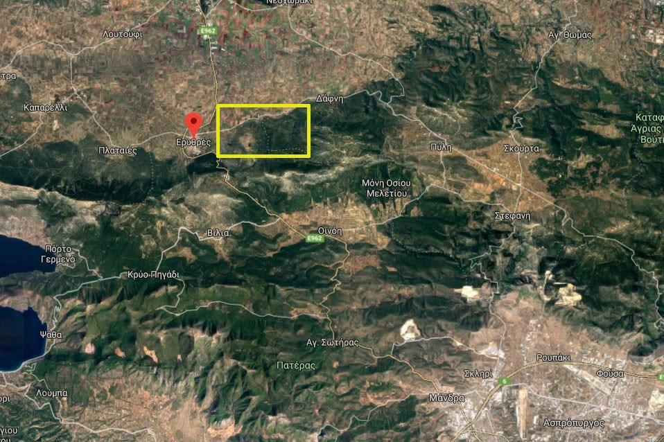Το σημείο μεταξύ Ερυθρών και Δάφνης όπου σύμφωνα με την Πυροσβεστική έχει ξεσπάσει η πυρκαγιά