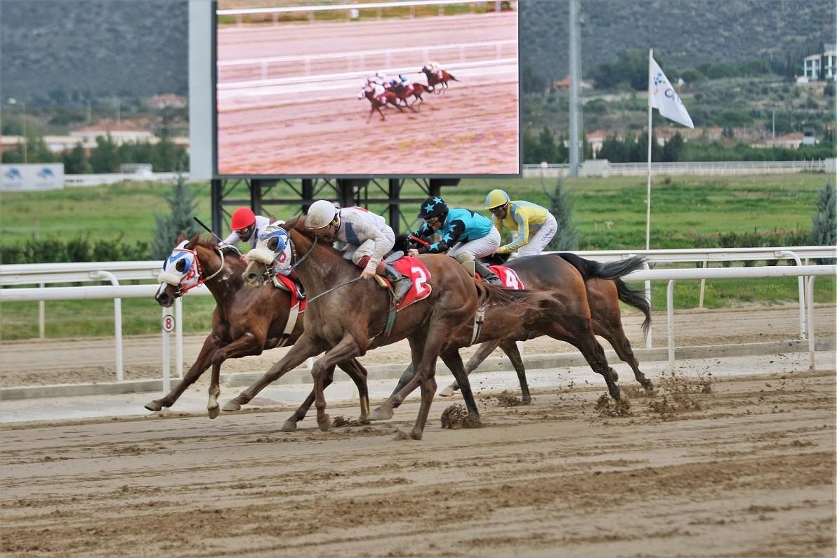 Μοναδικό θέαμα και δυνατές συγκινήσεις προσφέρουν οι ιπποδρομίες στο Markopoulo Park