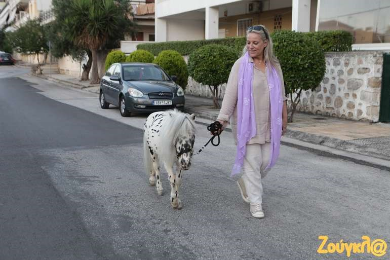 Είναι αυτό που... νομίζετε: Βόλτα με το ιππάριο στο κέντρο της Ραφήνας!