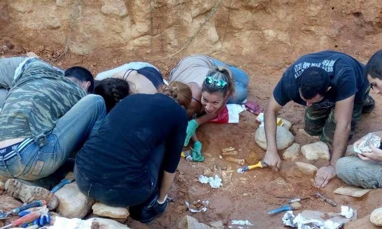 Εικόνα από τις ανασκαφές στο Πικέρμι, όπου βρέθηκαν τα οστά τους