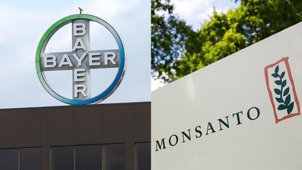 """Πώς η Bayer καλύπτει τις αμαρτίες της Monsanto-ΤΟ ΚΑΡΤΕΛ ΤΩΝ ΔΗΛΗΤΗΡΙΩΝ ΑΠΟ ΤΟΝ ΧΙΤΛΕΡ ΕΩΣ ΣΗΜΕΡΑ - ΤΟ DDT ΚΑΙ Ο """"AGENT ORANGE"""" ΠΟΥ ΚΑΤΕΣΤΡΕΨΕ ΤΟ ΒΙΕΤΝΑΜ..."""
