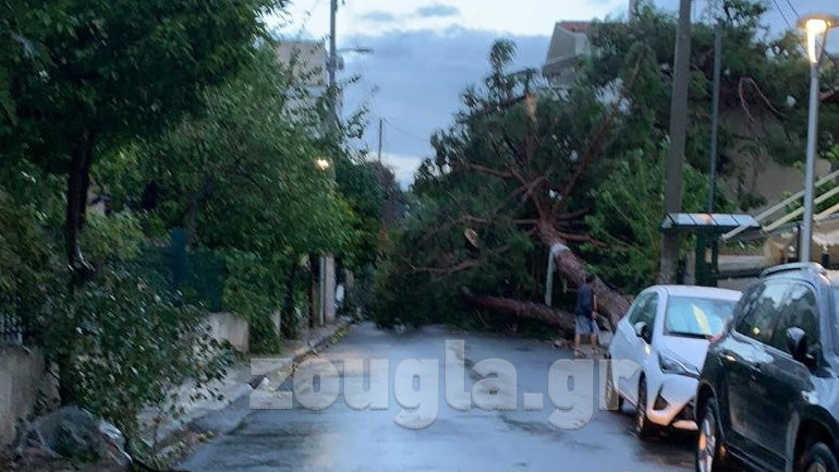 Πτώση δέντρου στο Ηράκλειο Αττικής