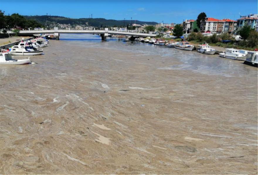 Αργοπεθαίνει η θάλασσα του Μαρμαρά (ΒΙΝΤΕΟ) | orthodoxia.online | θαλασσα μαρμαρα | αλγη | ΚΟΣΜΟΣ | orthodoxia.online